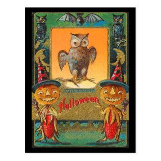Búho de Halloween del vintage Postal