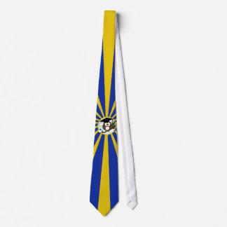 Búho de la graduación con colores de la escuela corbata