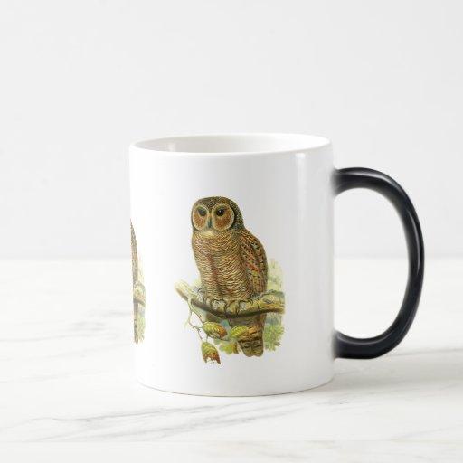 Búho de madera abigarrado tazas de café