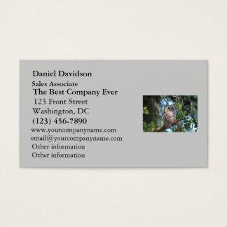 Búho de pitido salvaje que mira fijamente en el tarjetas de visita
