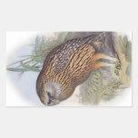 Búho de risa extinto de Whekau del vintage Pegatinas