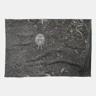 búho de tierra que mira para arriba el animal toallas de mano