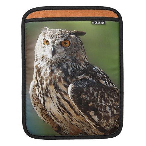 Búho del atontamiento Eagle con los ojos anaranjad Funda Para iPads