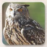 Búho del atontamiento Eagle con los ojos anaranjad Posavaso
