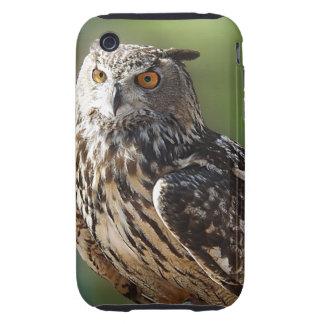 Búho del atontamiento Eagle con los ojos Funda Though Para iPhone 3