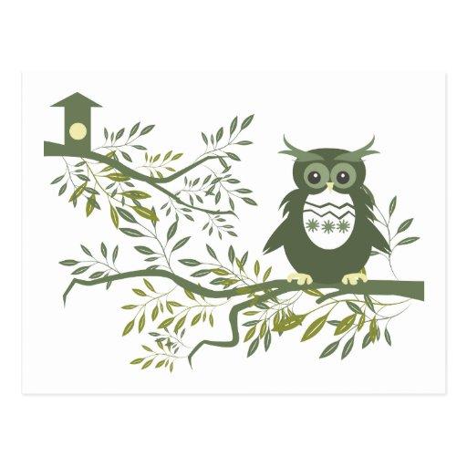 Búho del ~ del búho 3 que se sienta en rama de tarjetas postales
