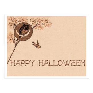 Búho del feliz Halloween Tarjetas Postales