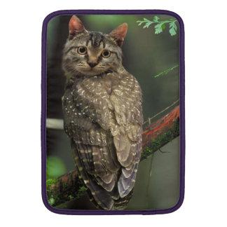 Búho del gato funda macbook air