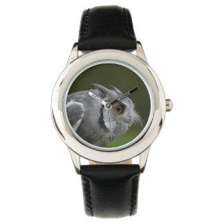 Búho del gris del bebé relojes de pulsera