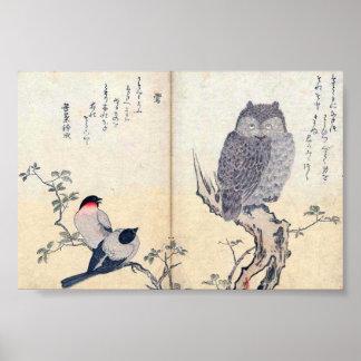 Búho e impresión japoneses de los pinzones póster