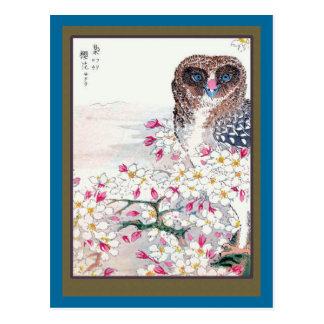 Búho en cerezo postales