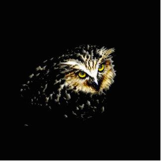 Búho en la noche imán fotoescultura