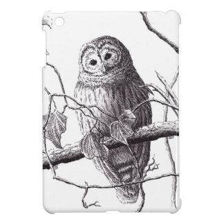 búho en pluma de la rama y el dibujo del pájaro de