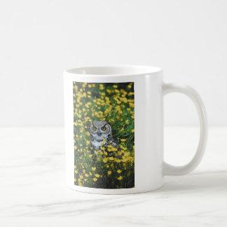 Búho en ranúnculos taza de café