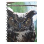Búho espigado largo sabio cuadernos