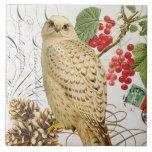 búho francés del invierno del vintage moderno azulejo