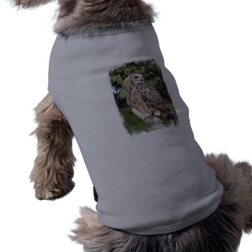 Búho grande en la camisa del mascota de la cerca camisetas de perro