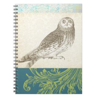 Búho gris en fondo del modelo cuadernos