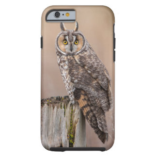 búho Largo-espigado Funda Para iPhone 6 Tough