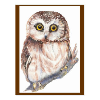 Búho lindo - colección del pájaro de la acuarela tarjetas postales