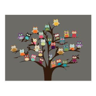 Búho lindo en fondo del árbol el | postales