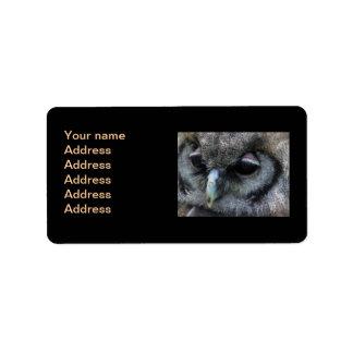 Búho lindo etiquetas de dirección