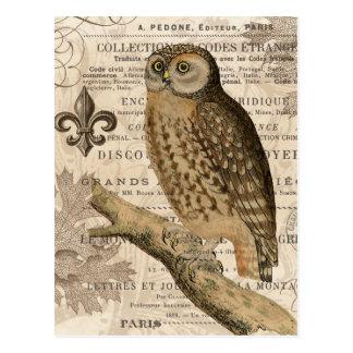 búho moderno del francés del vintage tarjeta postal