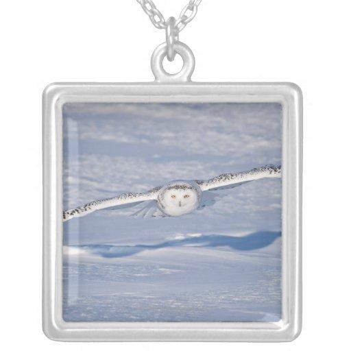 Búho Nevado en vuelo. 2 Grimpolas Personalizadas