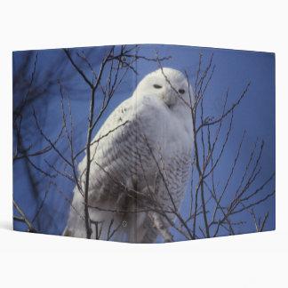 Búho Nevado - pájaro blanco contra un cielo azul Carpeta 2,5 Cm