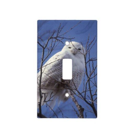 Búho Nevado, pájaro blanco contra un cielo azul Cubierta Para Interruptor