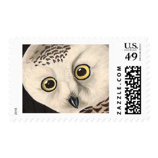 Búho Nevado - pájaros finos América del vintage de Estampilla