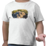 búho nevoso, scandiaca de Nycttea, polluelos en su Camiseta