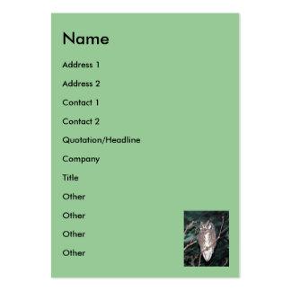 Búho, nombre, dirección 1, dirección 2, contacto tarjetas de visita grandes