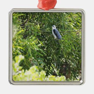 Búho que se encarama en un árbol adorno navideño cuadrado de metal