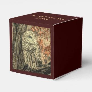 Búho rústico en árbol caja para regalos
