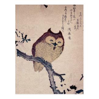 Búho sonriente japonés lindo postales
