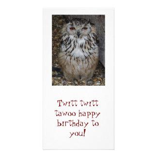 ¡búho, tawoo del twitt de Twitt feliz cumpleaños! Tarjetas Fotográficas