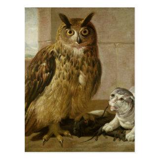 Búho y gato de Eagle con las ratas muertas Postales