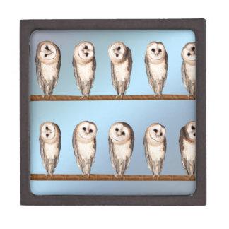 Búhos curiosos cajas de recuerdo de calidad