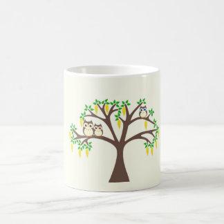 Búhos de Brown en una taza del árbol del Laburnum