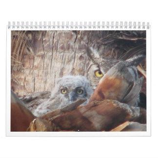 Búhos de la mamá y del bebé en una palmera calendarios