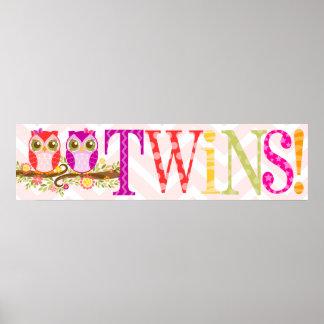 Búhos del bebé - chicas gemelos rosa y bandera púr póster
