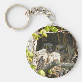 Búhos del bebé llavero redondo tipo pin