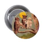 Búhos del vintage pin