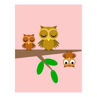 búhos lindos y divertidos tarjetas postales