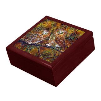 Búhos que pintan la caja de regalo del recuerdo y