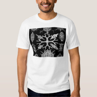 Build beauty together cell organisms Radiolarians Tee Shirt