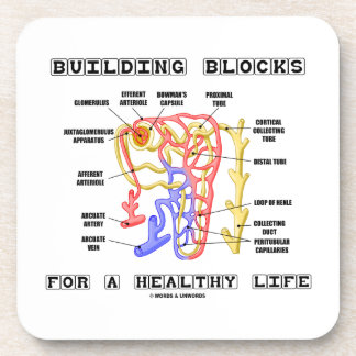 Building Blocks For A Healthy Life Kidney Nephron Drink Coaster