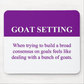 Building Consensus on Goal Setting (2) Mouse Pad