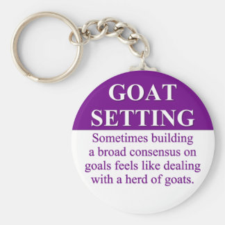Building Consensus on Goal Setting (3) Keychain